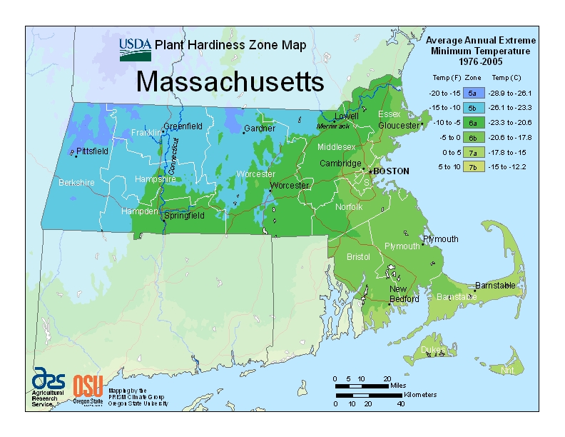 MA_Hardiness_Zone_map-USDA